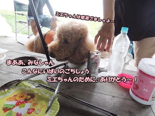 DSCN494820130904.jpg