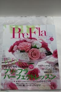 prefra2_1.jpg