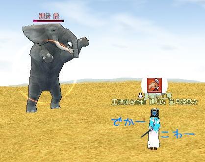 親分象と戯れる!