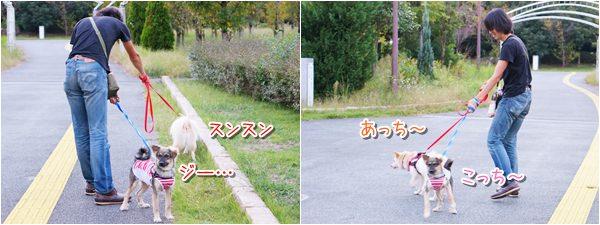 20140929_2.jpg