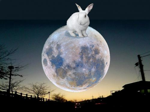 on_the_moon_convert_20141016092728.jpg