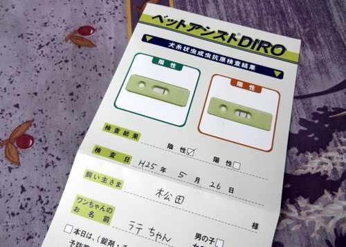 Latte339_05.jpg