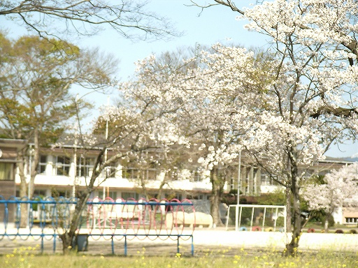 Mimata16.jpg