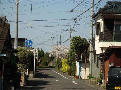 Mimata19.jpg