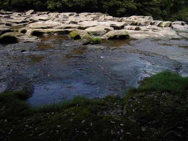 Sekinoo2007-23.jpg