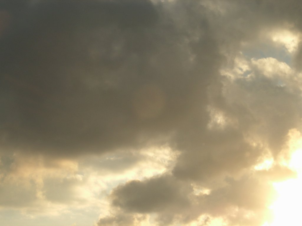 SkyDay126.jpg