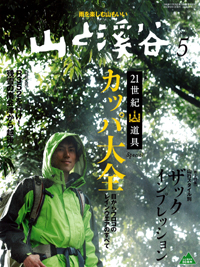 100415yamakei5.png