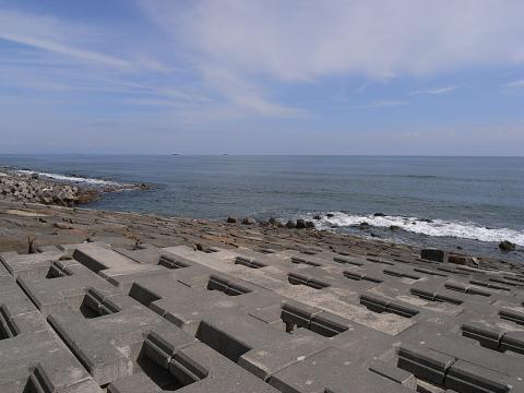 サーモン 鮭釣り 苫小牧 糸井5