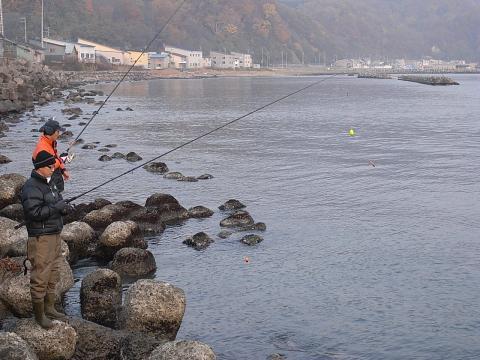 古平川河口 鮭釣り4