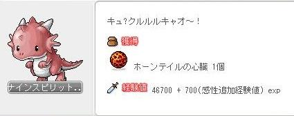 Maple120204_140603.jpg