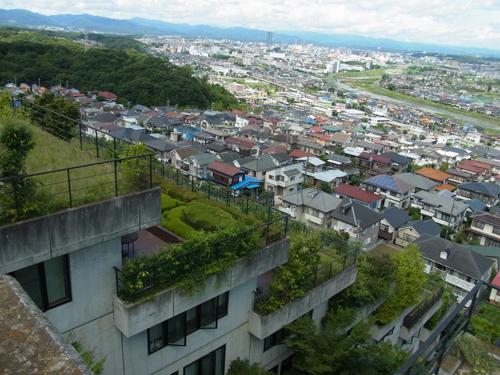 屋上緑化からの眺め