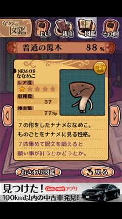 nanameco2.jpg