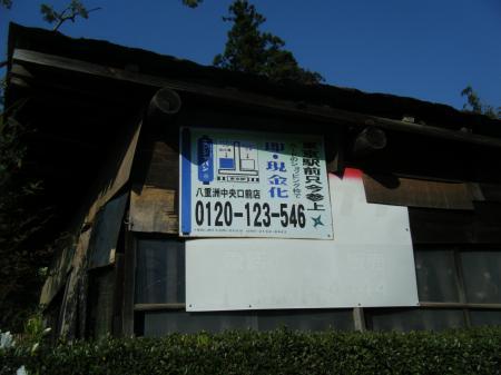 百草2010 2