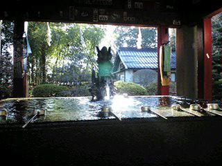 2010araya2.jpg