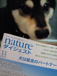 n-raku.jpg