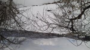nagano-snow2.jpg