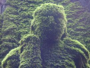 068_convert_20100315132257.jpg