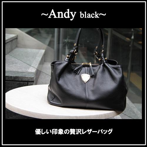 アンディ黒-1