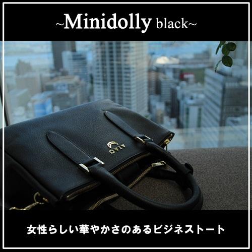 ミニドリー黒-1