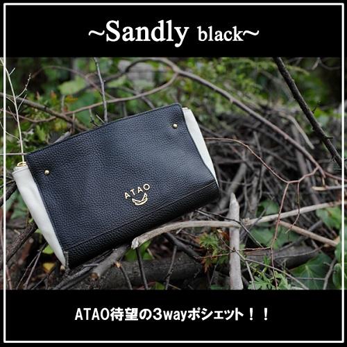 サンドリー黒-1