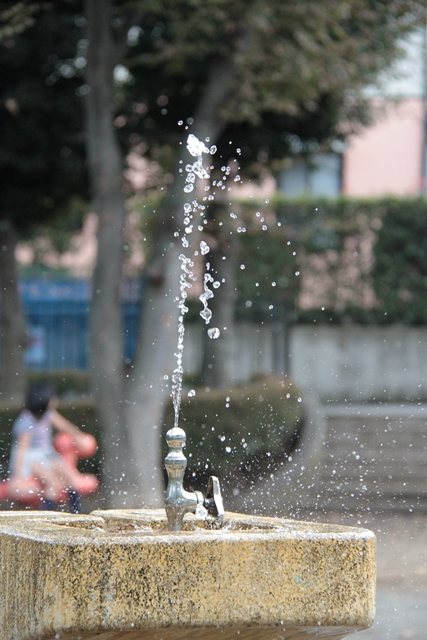 photo-lesson2.jpg