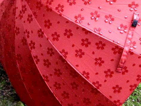 桜の傘 015