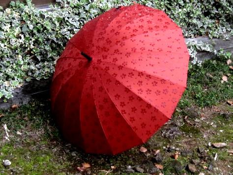 桜の傘 006