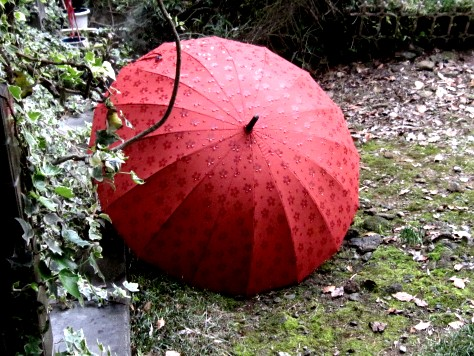 桜の傘 012