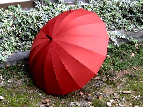桜の傘 005