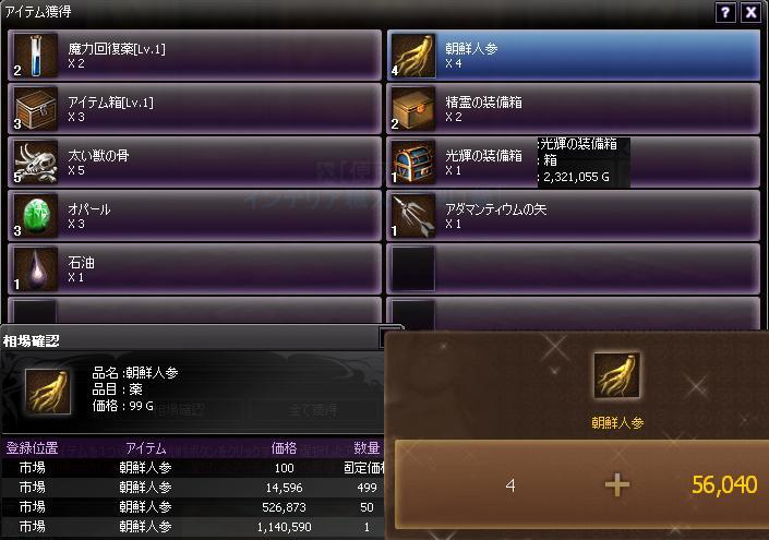 20110715朝鮮人参