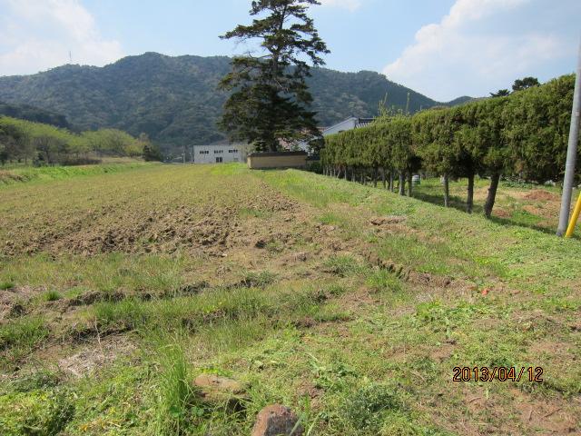 上の田の畦