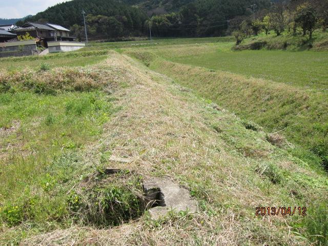 草を刈った土手の上