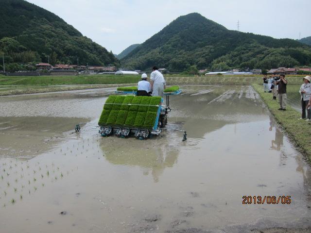 機械による田植え