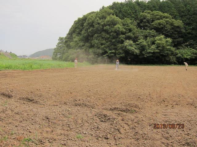 蕎麦の防除