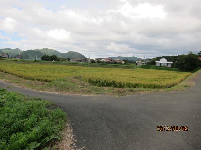 nisimura1