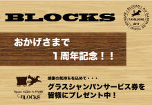 BLOCKS_1周年