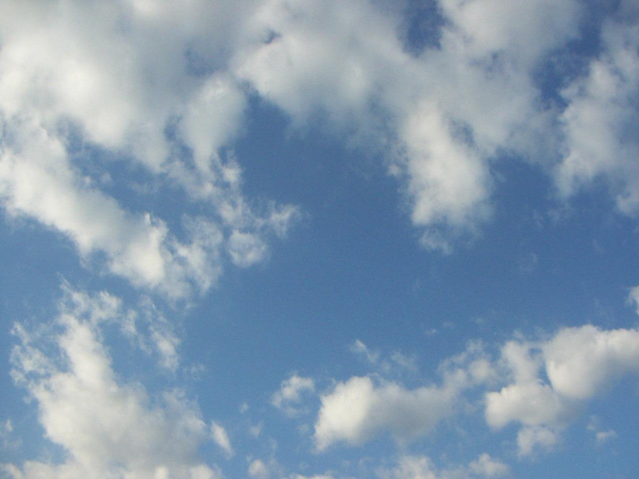 PICT0046_20111026095401.jpg