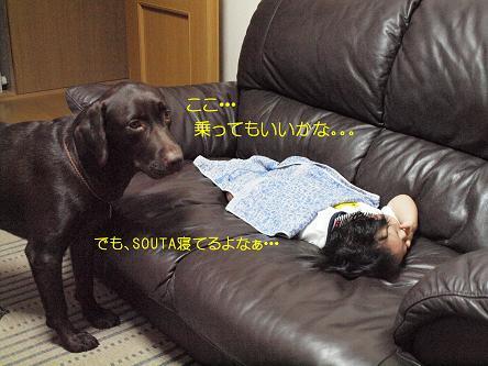 PA025060_01-1.jpg