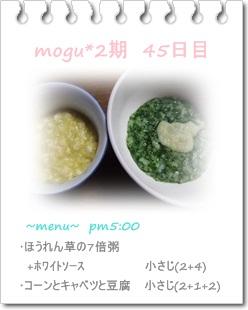 9gatu1.jpg