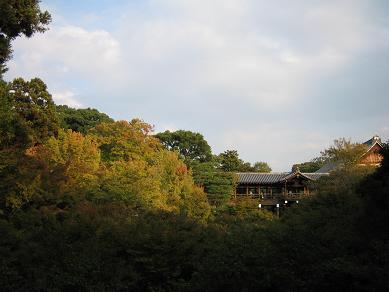 Shigemori (31)-s.JPG