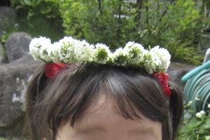 201105-tomo05.jpg