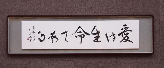 20120130senda-ai01-m.jpg