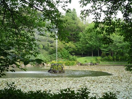 yobitugipark.jpg