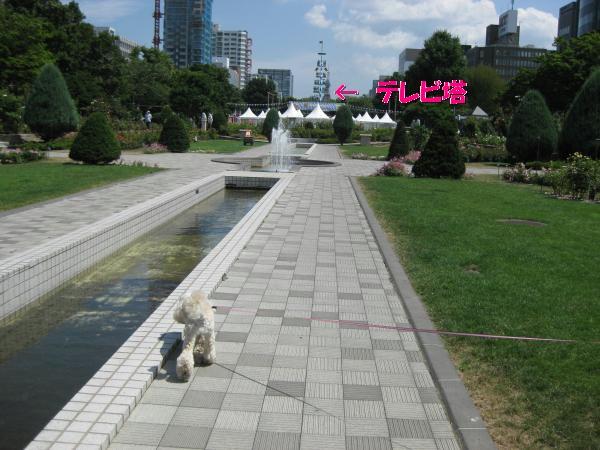 026_convert_20110811135318.jpg