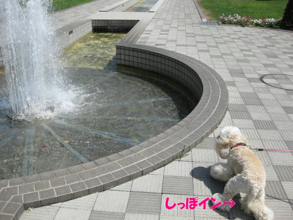 028_convert_20110811134723.jpg
