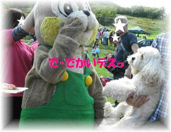 030_convert_20110923181418.jpg