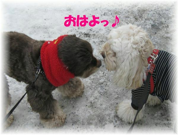 047_convert_20120307164114.jpg