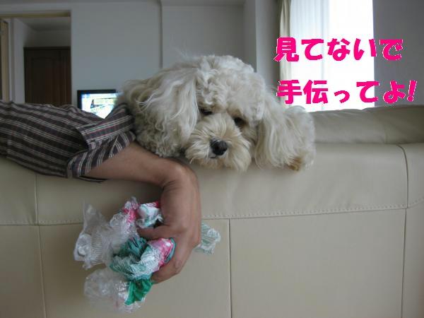068_convert_20110918111834.jpg