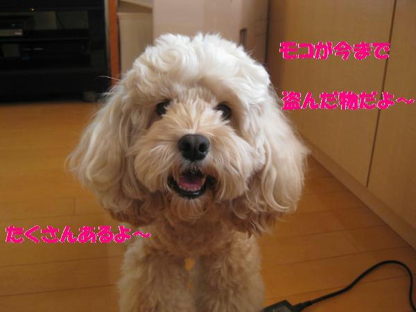 091_convert_20110831220157.jpg