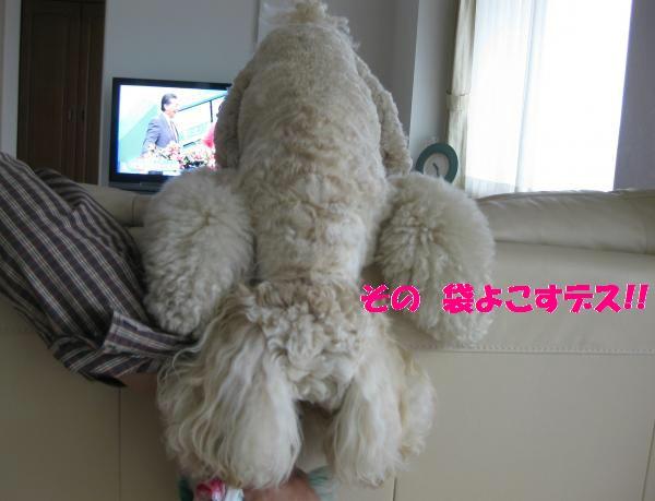 099_convert_20110918112103.jpg